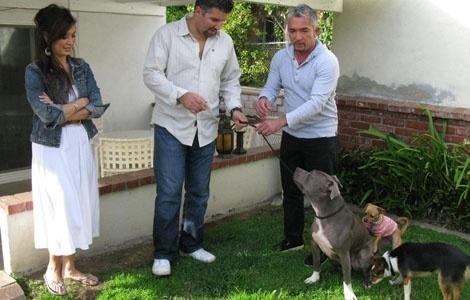 César Millán encantara perros españoles junto a famosos 10