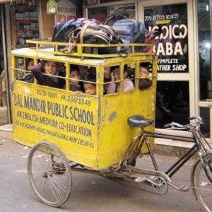 Bal Mandir Public School 22
