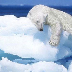 El deshielo del Ártico abre una segunda ruta navegable 25