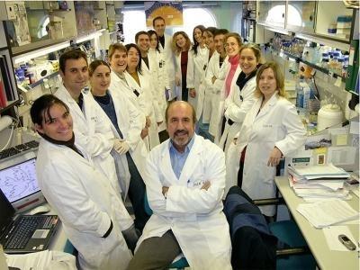 1a76fc9d78dc2a3abb4431882931feda - La vacuna española contra el VIH logra una respuesta inmune del 90%