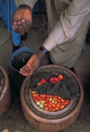 Noticias Curiosas - Refrigerar alimentos sin electricidad