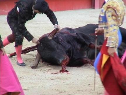 El PP aplaude que se emitan corridas de toros en horario infantil 2