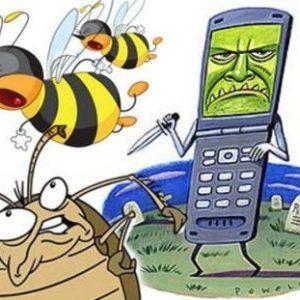 Humanidad en peligro los móviles matan a abejas y cucarachas 9