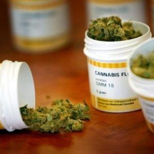 La marihuana impide el desarrollo del VIH en su etapa final 27