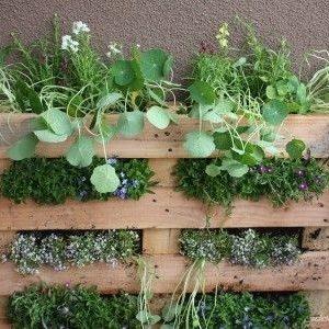 Manual para hacer un jardín o huerto vertical con un palet de madera 26