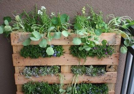 08a4cf1e44f783c853b207a033a173b9 - Manual para hacer un jardín o huerto vertical con un palet de madera