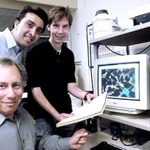 Desarrollan el primer nanomedicamento para tratar el cáncer en humanos 26