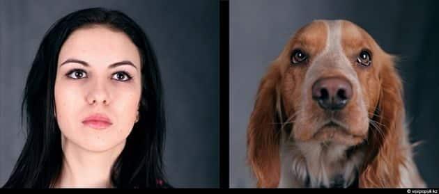 Tu mascota se parece a ti, ya sea un perro o un gato 17