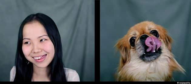Tu mascota se parece a ti, ya sea un perro o un gato 18