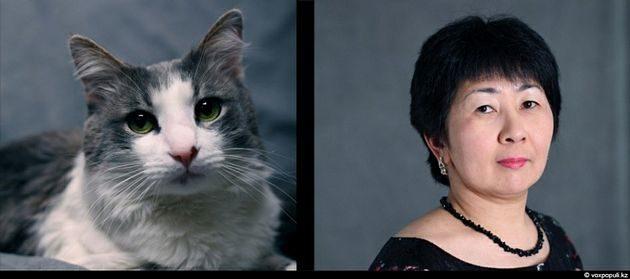 Tu mascota se parece a ti, ya sea un perro o un gato 19