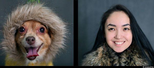 Tu mascota se parece a ti, ya sea un perro o un gato 21