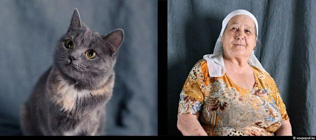 Tu mascota se parece a ti, ya sea un perro o un gato 24