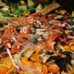 Un tercio de los alimentos del mundo va a la basura 14