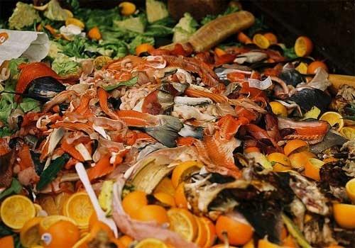 5b75bc403643fa71c32291e5c30d6c36 - Un tercio de los alimentos del mundo va a la basura