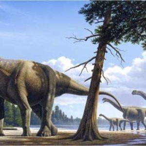 El calentamiento global, cosa de dinosaurios y sus flatulencias 7