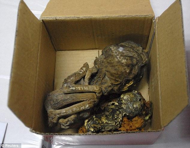 ¡Macabro! hallan fetos envueltos en hojas de oro dentro de una maleta (Advertimos Fotos Impactantes) 2