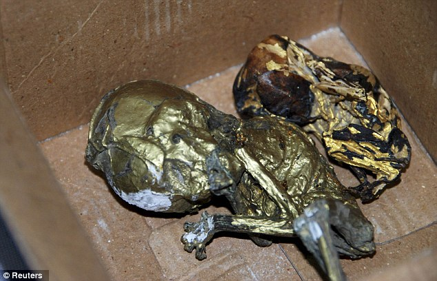 ¡Macabro! hallan fetos envueltos en hojas de oro dentro de una maleta (Advertimos Fotos Impactantes) 5