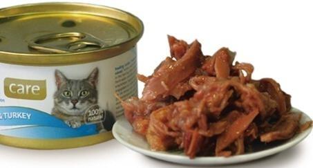 4e8a888bd94e7d2c10c18db923bfe560 - Podríamos alimentarnos de comida para gatos