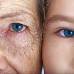 Científicos japoneses descubren la proteína que causa el envejecimiento 24