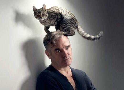 0236fe4ffb3bfc43e63cb946c008ba7d - Morrissey con un gato en la cabeza por PETA