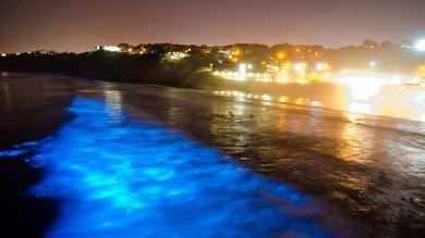 Una misteriosa luz azul aparece en playas de California 22
