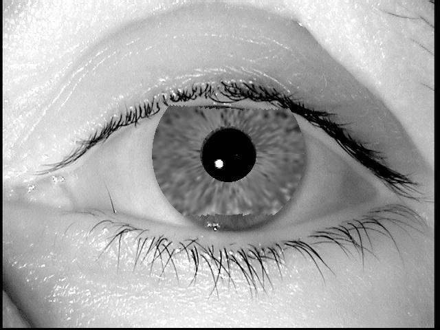 289fe0b4ae0e45916b897d6da193c72d - Crean imágenes falsas de ojos que pueden engañar a los escaner de seguridad