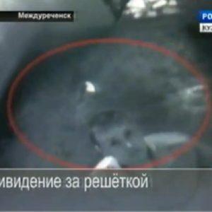 El fantasma de un preso muerto aparece en cárcel de Siberia (Video) 19
