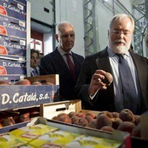 67 millones de kilos de comida servirán para paliar el hambre en España 20