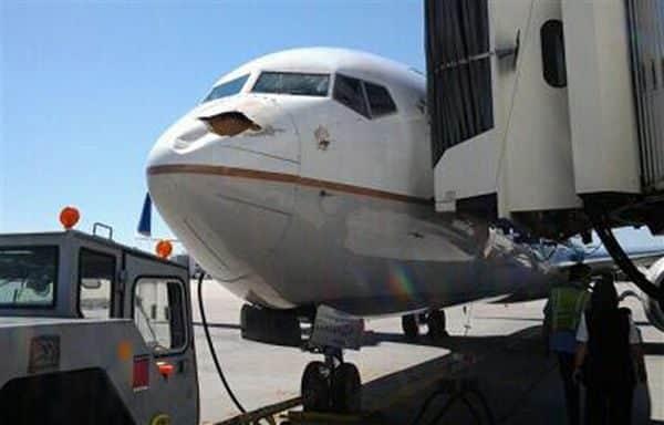 Impresionante impacto de un pájaro contra un Boeing que estaba aterrizaba 3