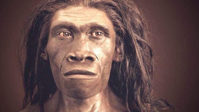 En África coexistieron otros dos tipos de especies junto al Homo Erectus 16