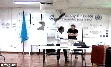 4e9a458c4df878b0926151b79ee6c997 - Gato hace una entrada espectacular en la Universidad de Costa Rica
