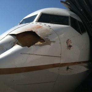Impresionante impacto de un pájaro contra un Boeing que estaba aterrizaba 8
