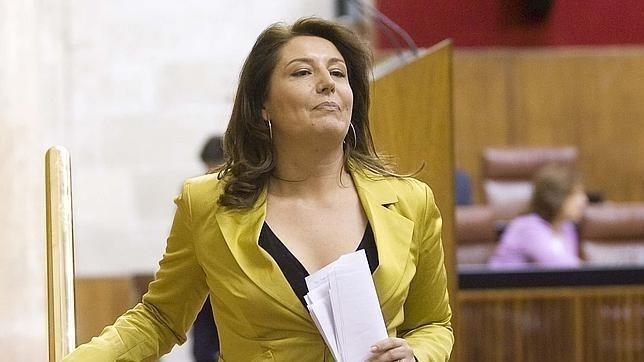 Despedida la jefa de limpieza de la Delegación del Gobierno en Andalucía por negarse a ser la sirvienta de la Delegada 12