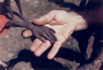 Las fotografías mas triste de la historia