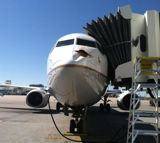 Impresionante impacto de un pájaro contra un Boeing que estaba aterrizaba 28