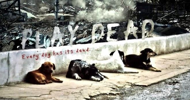 """21eb86776d318f3b4f164857992d3aad - """"Play Dead"""" Y si los perros fueran inmunes a los zombies"""