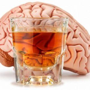 Tomar alcohol con moderación nos hace más inteligentes 18