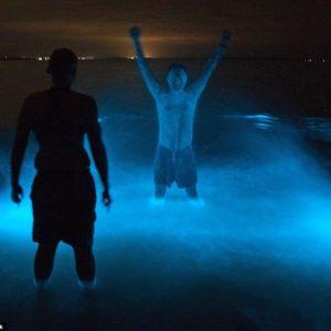 Un lago que brilla en la oscuridad 59