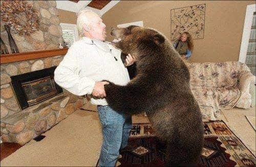 familia-tiene-un-oso-en-casa-4