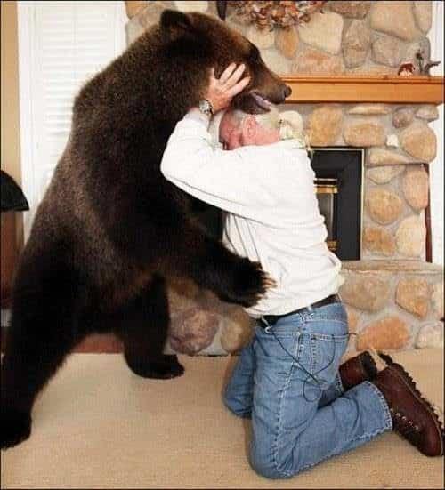 familia-tiene-un-oso-en-casa-6