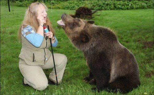 familia-tiene-un-oso-en-casa-7