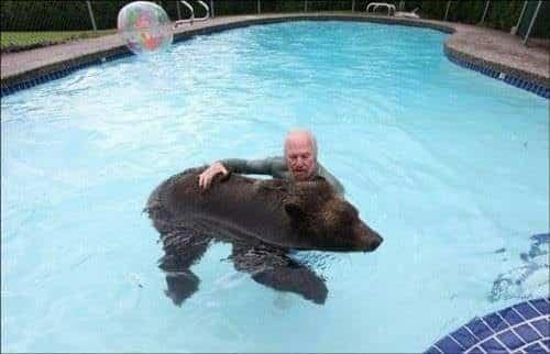 familia-tiene-un-oso-en-casa-9