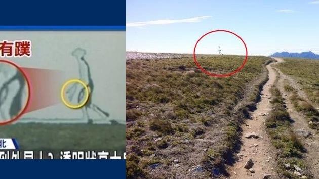 """La foto de un """"extraterrestre fantasma"""", en el punto de mira de internautas y expertos 2"""
