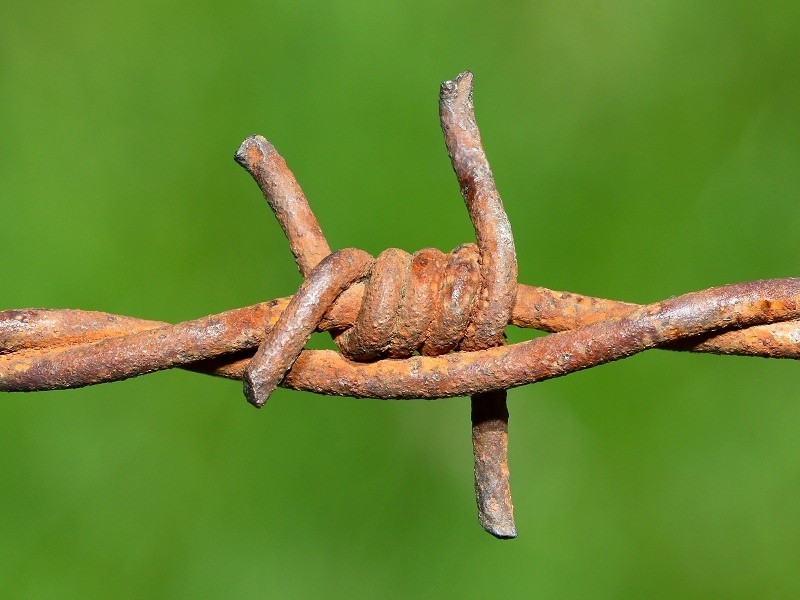 El 'Internet' de alambre de espino que usaron los agricultores en el siglo XIX 12