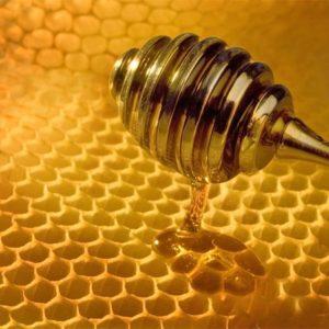 "Un láser ""marciano"" para detectar la miel falsa 8"