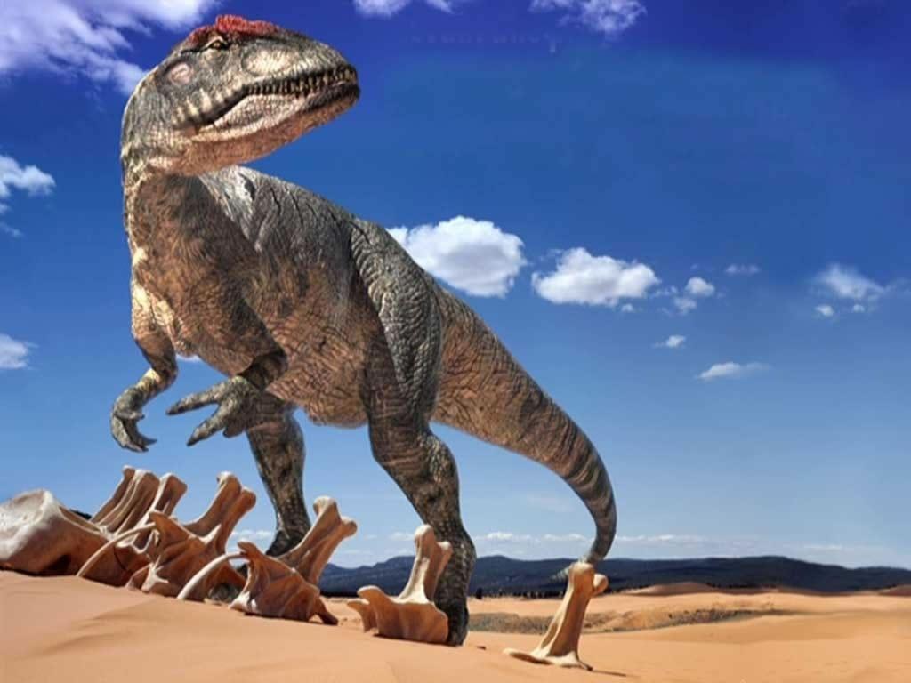 dc1d6f777886429c4e95ddd8c1ab062e - Los dinosaurios podrían haber alimentado a sus crías con 'leche'
