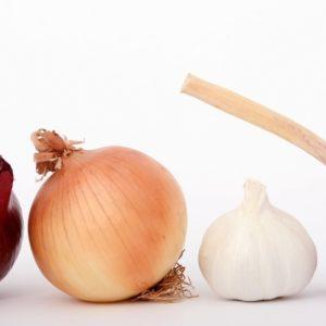La cebolla, el ajo y las legumbres aumentan las defensas y actúan como antigripales naturales 28