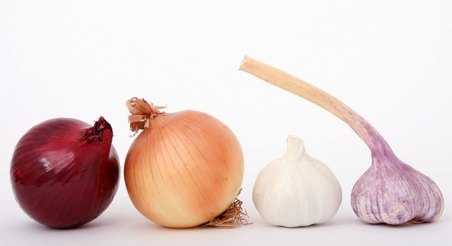 ff6f995ca52e8cb4d412e7c56015c435 - La cebolla, el ajo y las legumbres aumentan las defensas y actúan como antigripales naturales