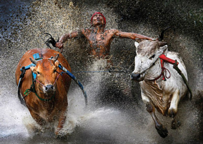La historia de 10 fotos ganadoras del World Press Photo 2013 10