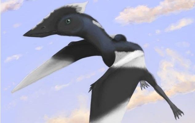 26f3685f8c8b4cb8623660372efdef39 - Desconocido dinosaurio volador recibirá el nombre de la niña de 5 años que lo encontró